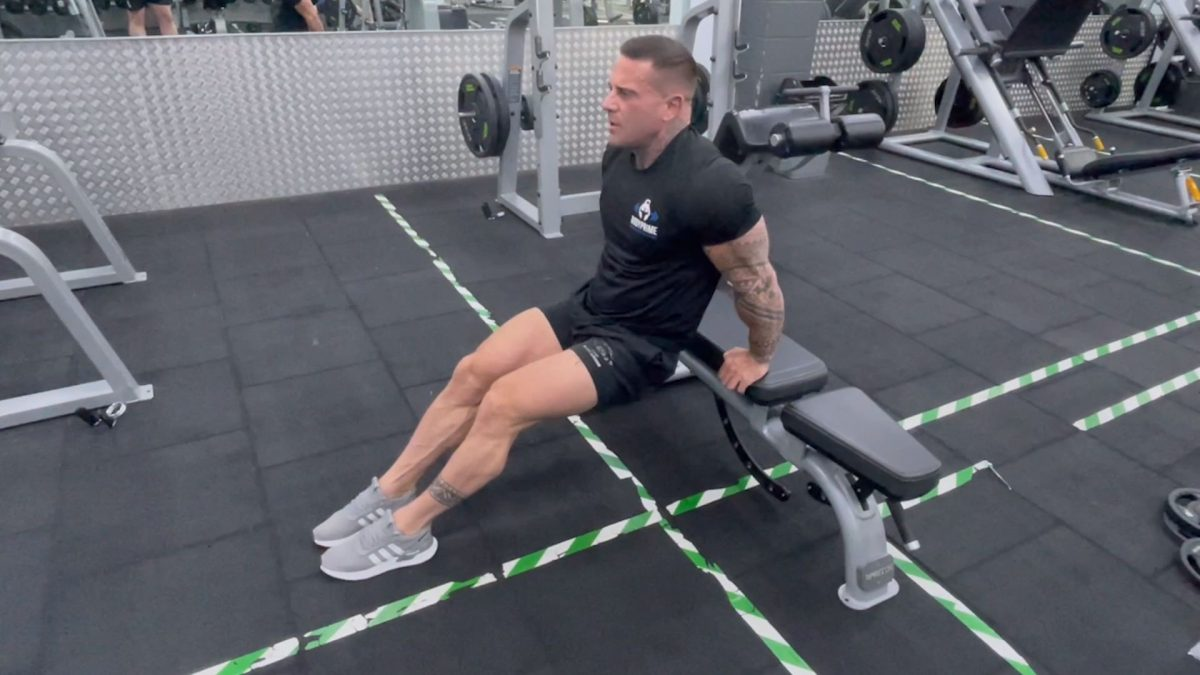 Tricep Dips On A Bench